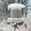 All-weather Feeder
